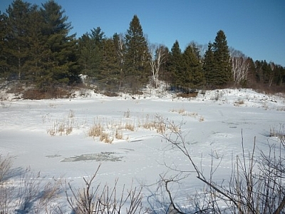 No need for snowshoe hiking in French River on this day — the snow was packed as ice!