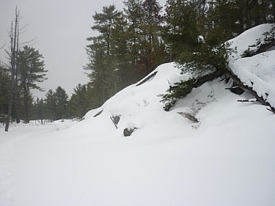 Snowy scene while snowshoe hiking in French River at Mashkinonje Provincial Park