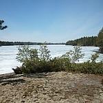 View of a still-ice-covered Lake Nipissing from Mashkinonje Park's Coastal Trail.