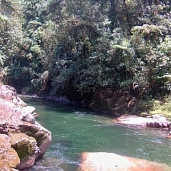 Swimming spot at Parque Nacional Podocarpus.