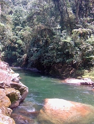 Swimming spot at Parque Nacional Podocarpus.