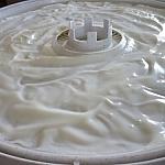 Vanilla yogurt spread out on a dehydrator sauce sheet.