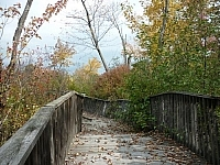 View of a crickety old bridge surrounded by colourful autumn leaves (at a park in Sturgeon Falls).
