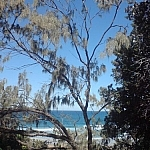 View of Alexandria Beach from behind some trees.