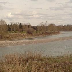 The Bow River running through a Calgary park.