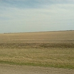 Flat Prairie scenery typical of the Western Canada road trip.