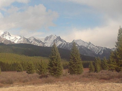 The Moose Meadows rest stop between Invermere and Calgary.