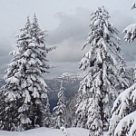 Scenery from the BC Park Trails at Mount Seymour Provincial Park.