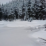 Small frozen pond along the Mount Seymour ski resort's Discovery Snowshoe Trails.