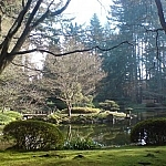 The Nitobe Gardens at UBC.