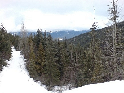Snowshoe trail and scenery at Garibaldi Provincial Park, accessed from the Whistler ski resort.