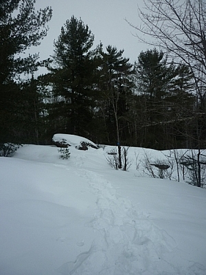 Following snowshoe tracks and blue markers along the Lapin Beach Trail while snowshoe hiking Mashkinonje Park.