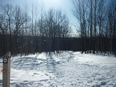 Scenery from winter walking the Laurentian Escarpment Trails in North Bay.