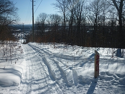 View of a pole line while winter walking the Laurentian Escarpment Trails.