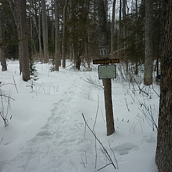 The junction to Samoset Trail from Lapin Beach Trail.