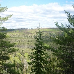 View from a lookout point along the McKenzie Trail at Mississagi Park.
