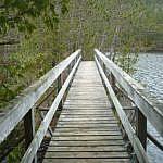 Bridge at the tip of the Etienne Trail loop.