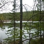 Trail scenery at Samuel de Champlain Park.