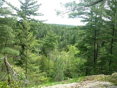 Scenic view from a lookout point along one of Temagami's White Bear Forest Trails.