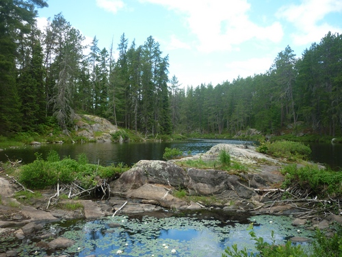 Beautiful wetland scenery while backpacking the Grand Campment-Nagle loop on the OTHT.