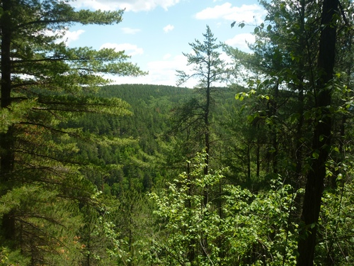 Panoramic scenery from the OTHT's Inland High Trail.