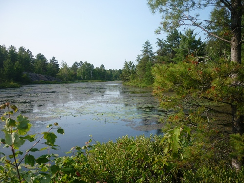Pioneer Trail scenery in French River