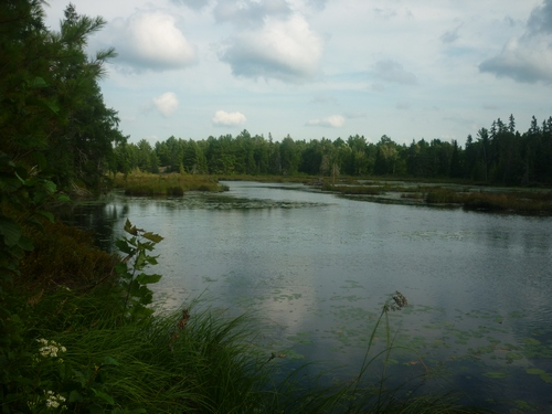 Scenery from Barbotte Trail in French River.