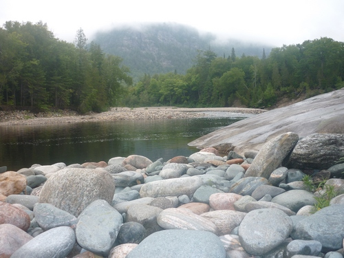 Fog shrouding the landscape around the Agawa River.