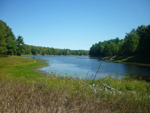 Scenery from the Slide Lake Loop at Frontenac Park.