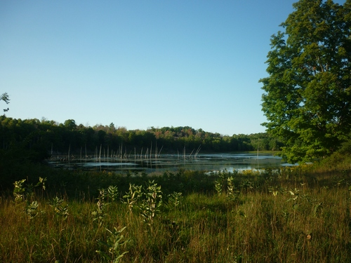 Views along the Slide Lake Loop at Frontenac Park.