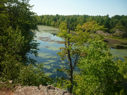 View from the trail at Frontenac Park.
