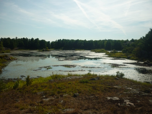 Scenery while hiking at Frontenac Park.