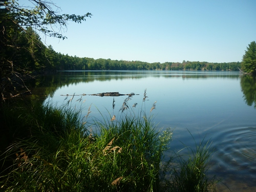 Scenery from Frontenac Provincial Park.