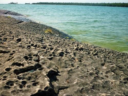 Pit karren along the shoreline at Misery Bay.